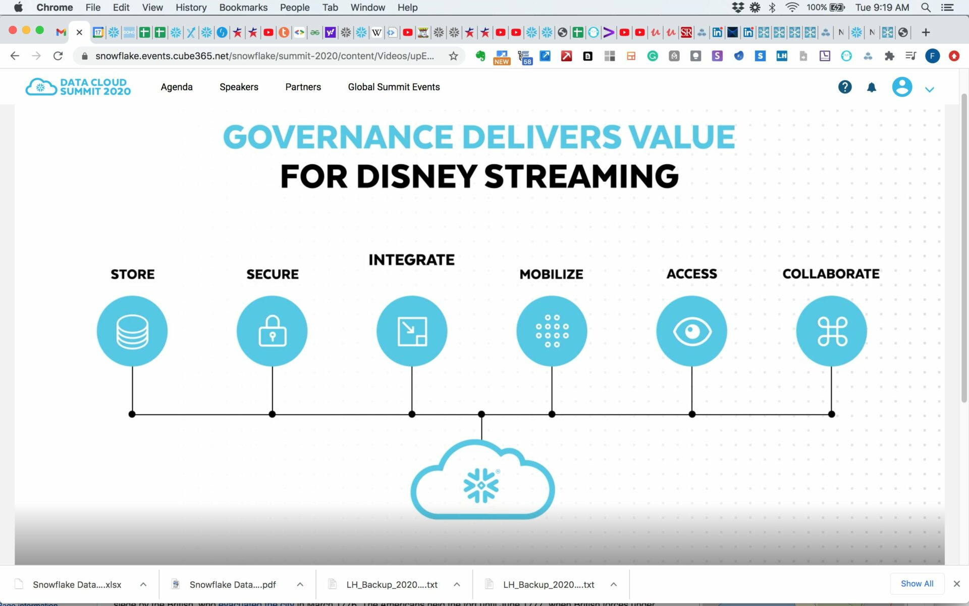 Data Governance at Disney
